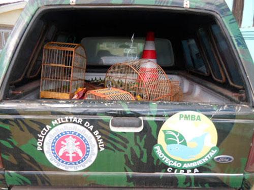 Companhia Independente de Polícia de Proteção Ambiental (CIPPA).