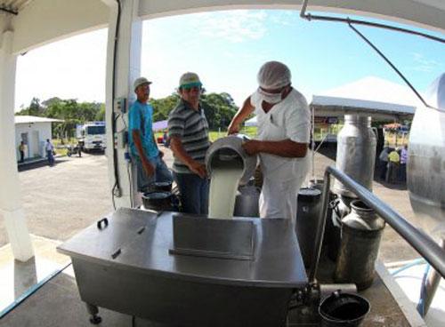 Usina de beneficiamento vai processar 10 mil litros de leite em Coaraci