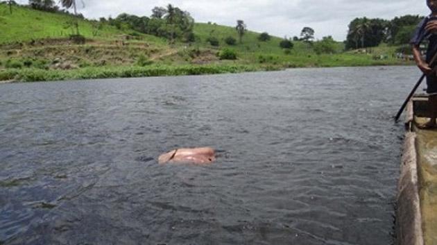Itacaré: Corpo de um homem foi encontrado boiando no Rio de Contas