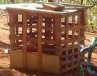 Criança de um ano é mantida dentro de gaiola de madeira