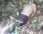 Corpo do taxista de Jequié desaparecido há dois dias foi encontrado no lixão de Ubaitaba