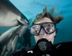Fotógrafo faz selfie com tubarões durante mergulho na África do Sul