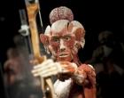 Berlim abre museu bizarro com cadáveres sem pele preservados