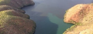 Comitê solicita aumento da vazão para dissipar mancha no rio São Francisco