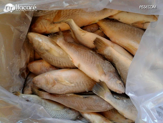 Itacaré terá distribuição de seis toneladas de peixe gratuito na Semana Santa