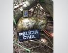 Polícia Civil apreende explosivos na zona rural de Gongogi