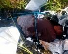 Porto Seguro: Ex-presidiário é encontrado morto, amarrado e dentro de saco