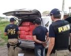 Polícia apreende meia tonelada de maconha em veículo na BR-116