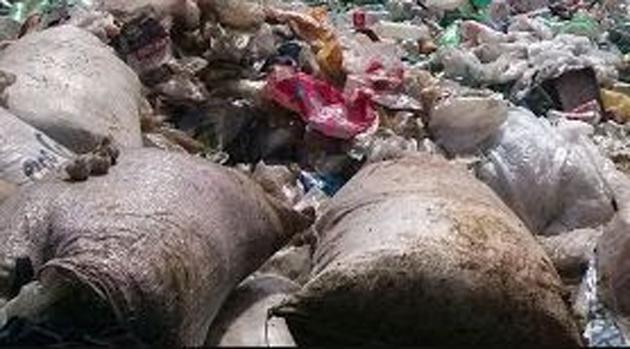 Feto é encontrado em lixão de Itajuípe