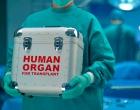 Transplantes registram aumento de 40% em sete meses na Bahia