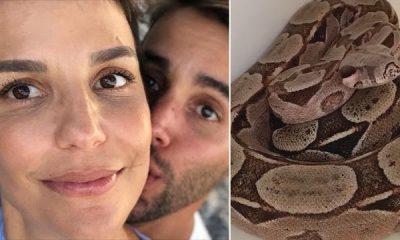 Marido de Ivete Sangalo encontra jiboia em sua casa na Bahia