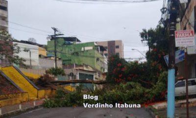 Governo da Bahia declara situação de emergência em Itabuna e outras oito cidades, por causa das chuvas